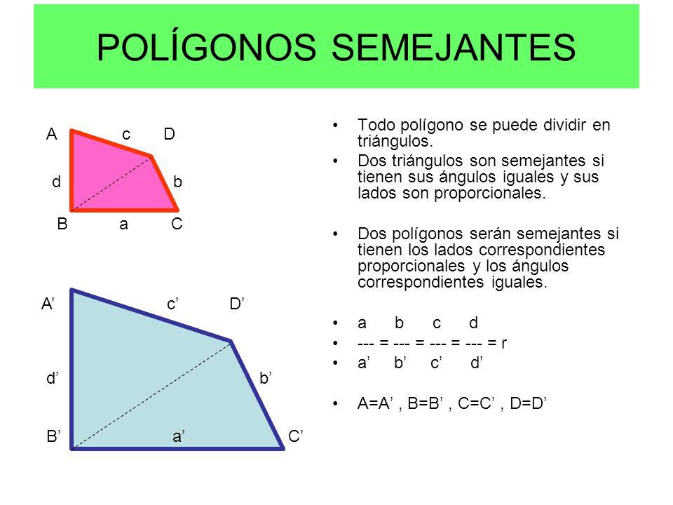 Teoremas de semejanza espad iii tc ppt video online for Se puede dividir un piso en dos