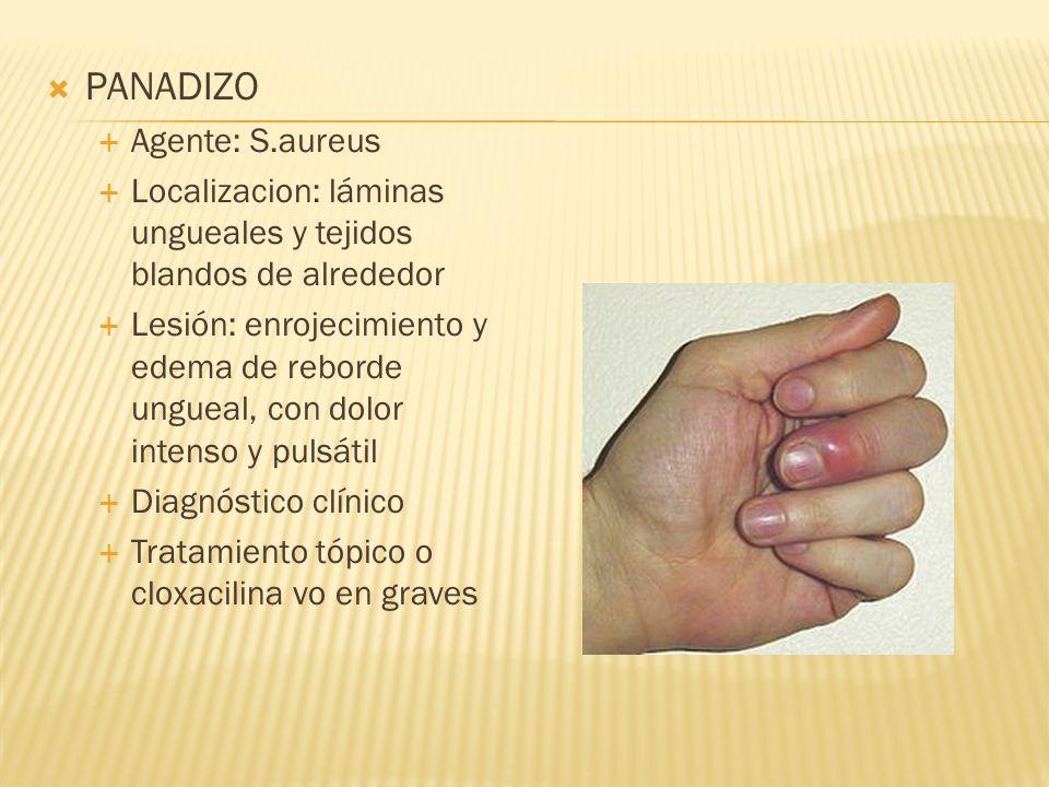 PANADIZO Agente: S.aureus