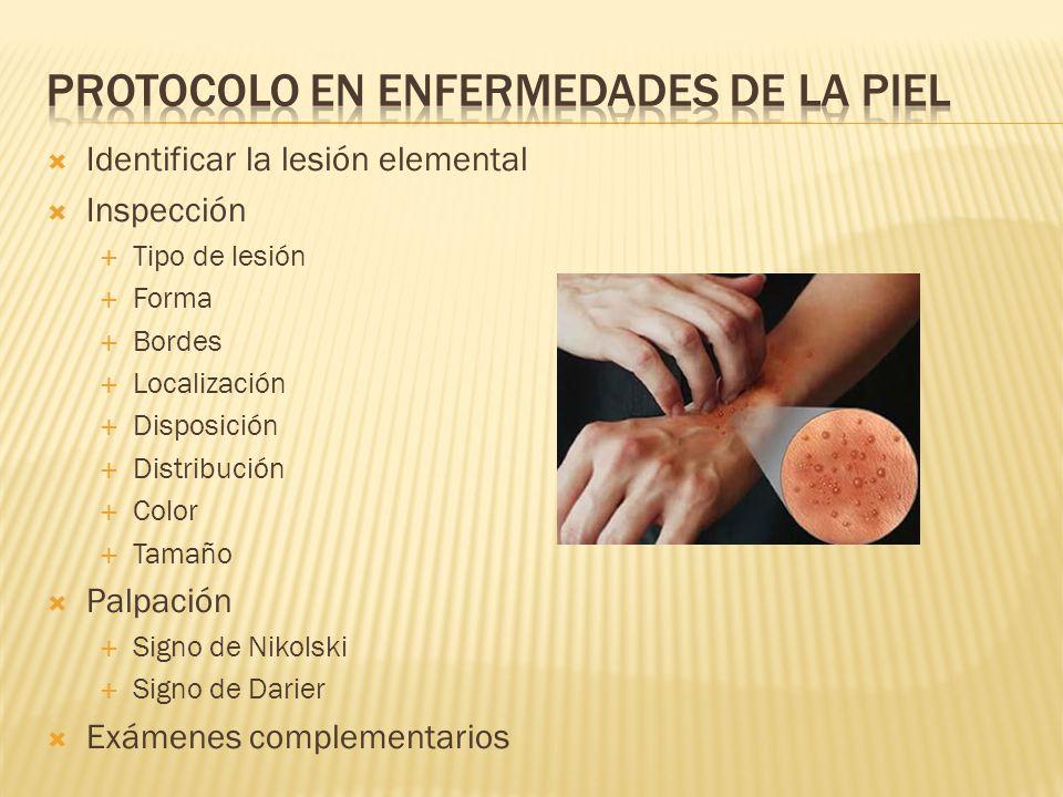 Protocolo en enfermedades de la piel