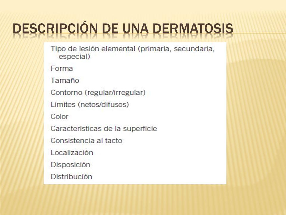 Descripción de una dermatosis
