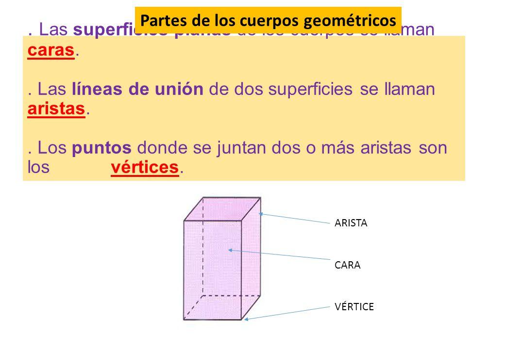 Partes de los cuerpos geométricos