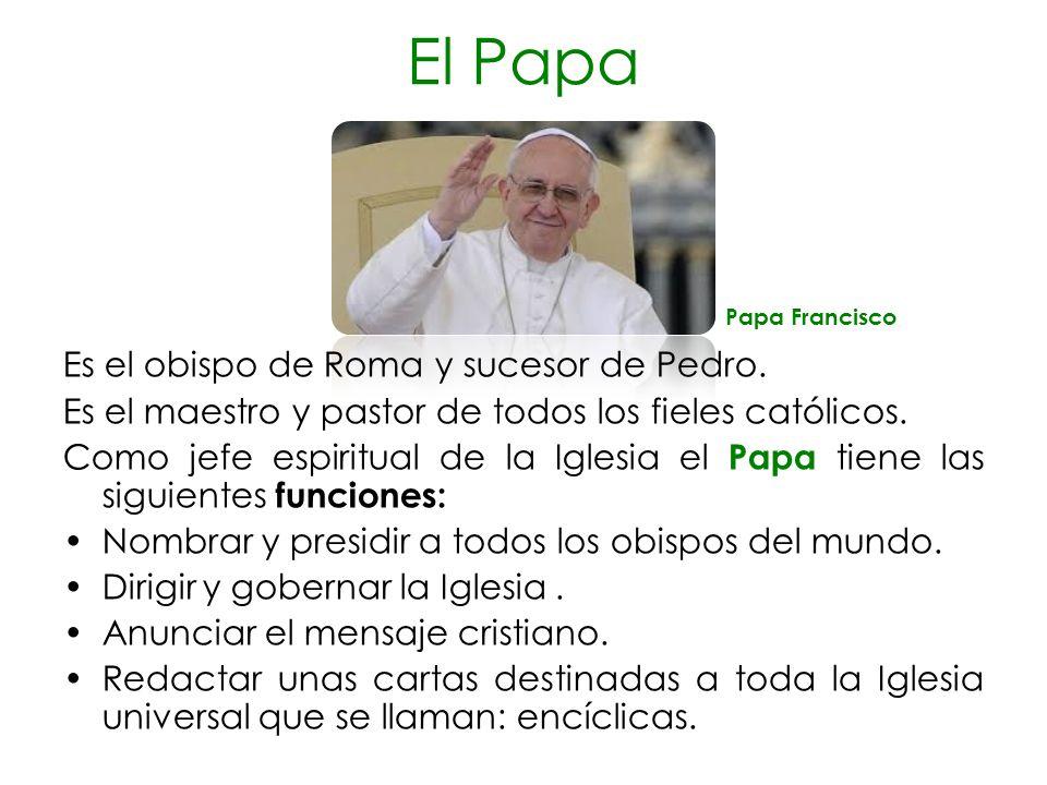 El Papa Es el obispo de Roma y sucesor de Pedro.