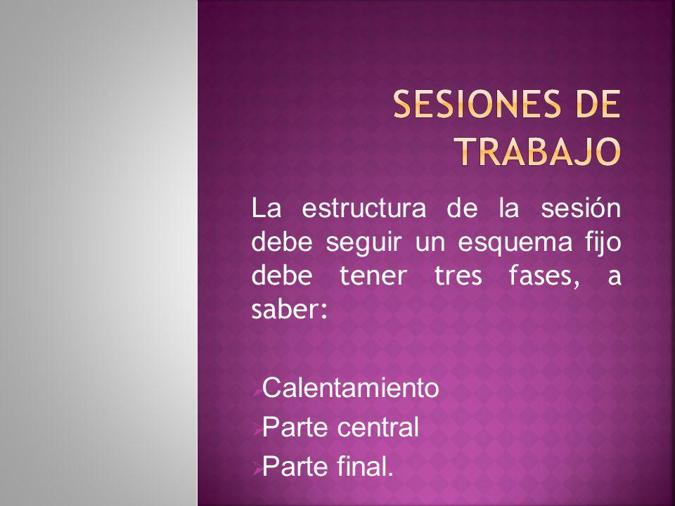 SESIONES DE TRABAJO La estructura de la sesión debe seguir un esquema fijo debe tener tres fases, a saber: