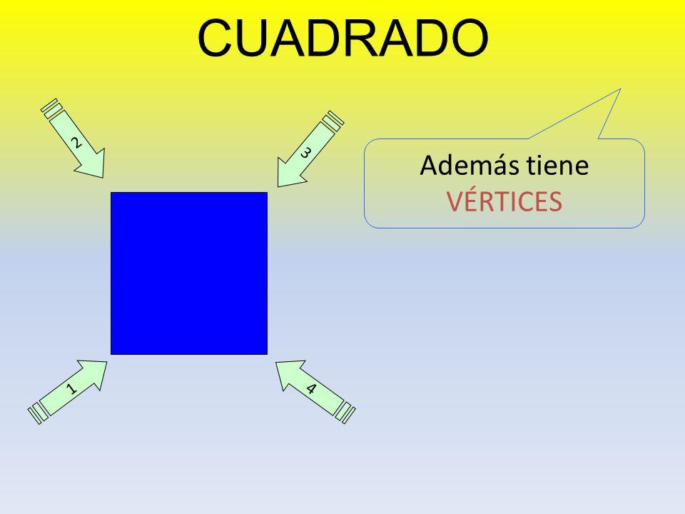 CUADRADO 2 3 Además tiene VÉRTICES 1 4