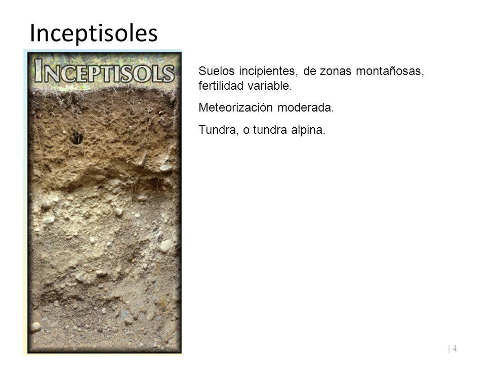 Clasificaci n de los suelos ppt video online descargar for A que se denomina suelo