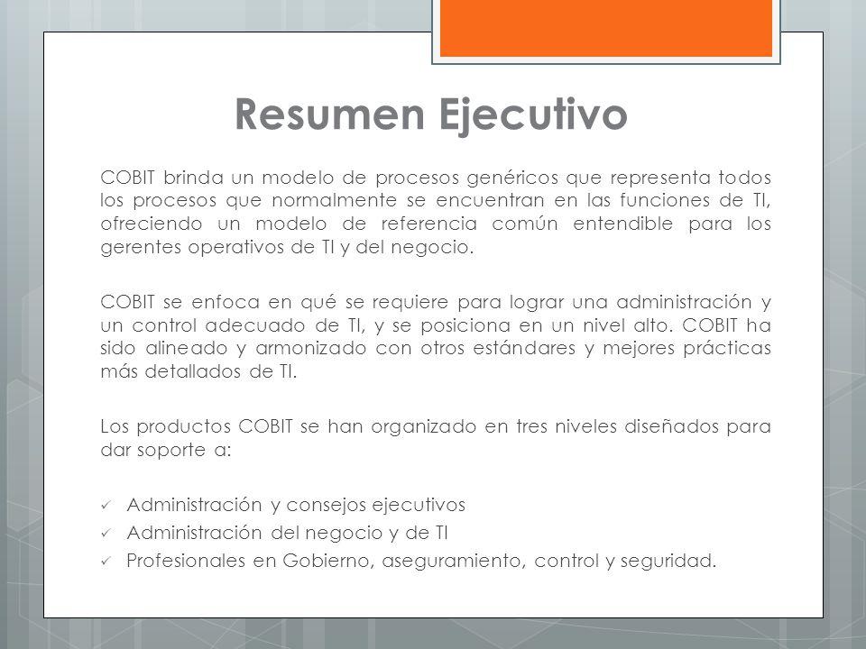 formato de resumen ejecutivo ejemplo modelo de resumen