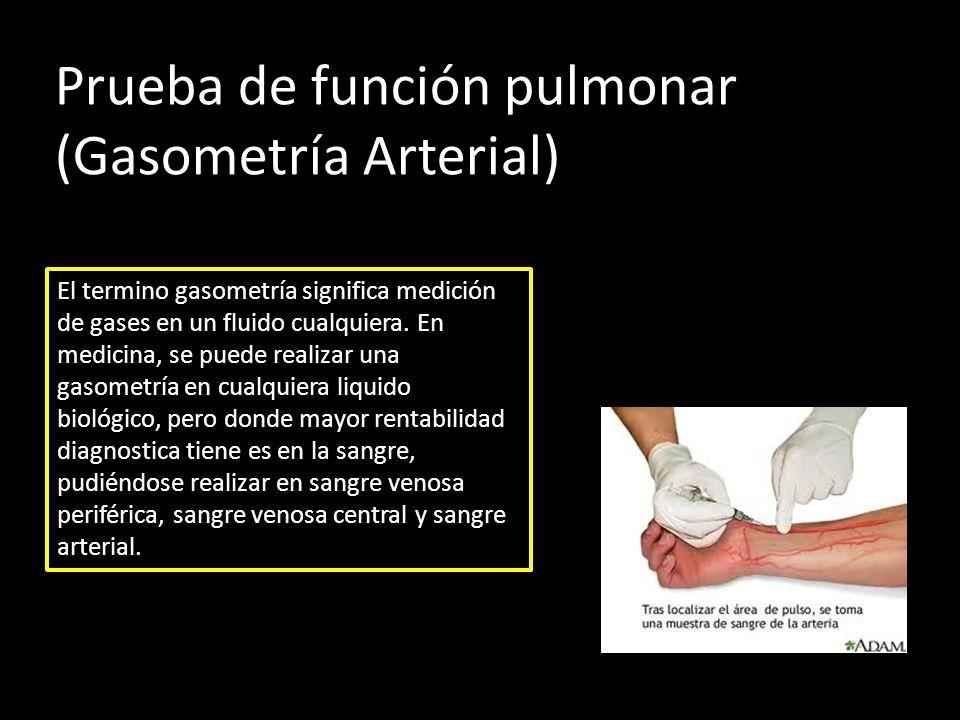 Sistema Respiratorio Órganos intercambiadores de gases: PULMONES ...