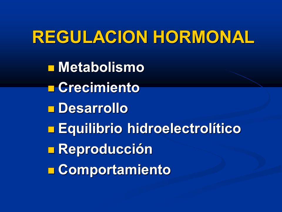 REGULACION HORMONAL Metabolismo Crecimiento Desarrollo