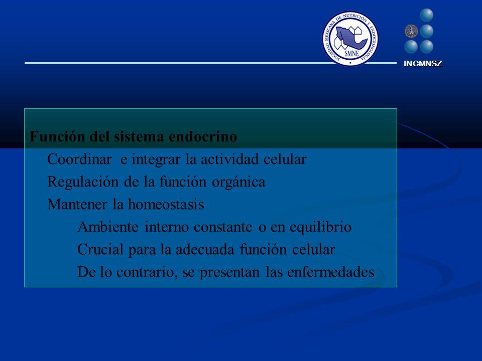 Función del sistema endocrino