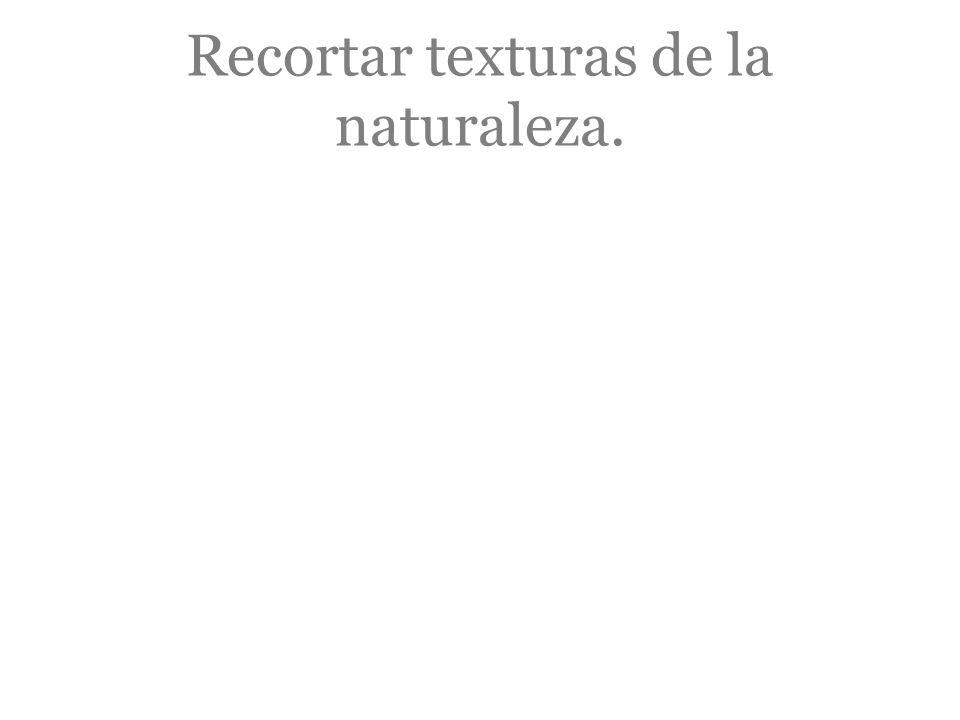 Recortar texturas de la naturaleza.