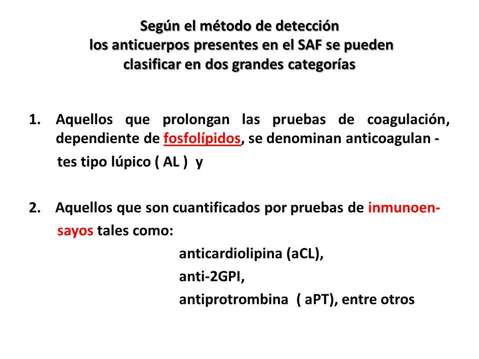Según el método de detección los anticuerpos presentes en el SAF se pueden clasificar en dos grandes categorías
