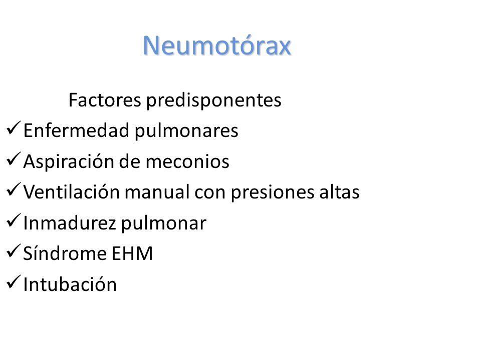 Neumotórax Factores predisponentes Enfermedad pulmonares