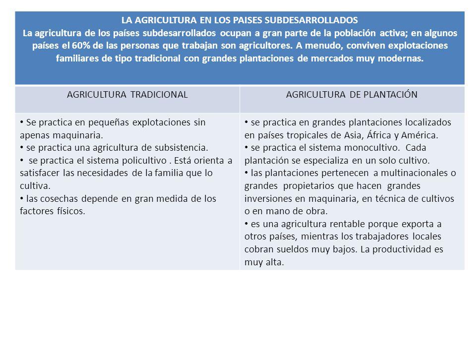 LA AGRICULTURA EN LOS PAISES SUBDESARROLLADOS