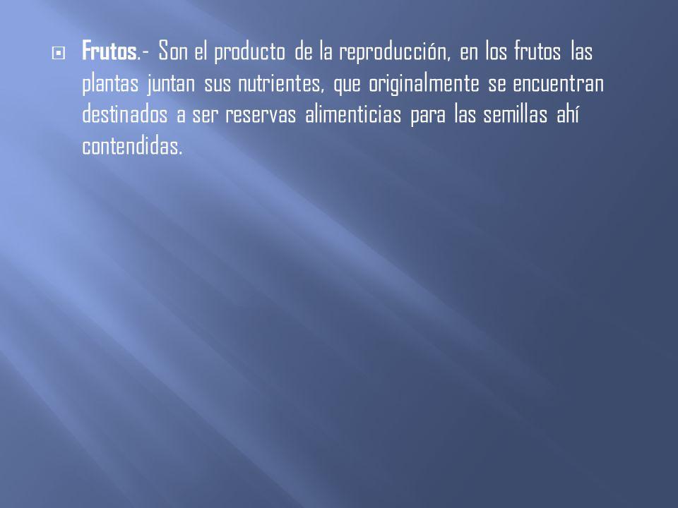 Frutos.- Son el producto de la reproducción, en los frutos las plantas juntan sus nutrientes, que originalmente se encuentran destinados a ser reservas alimenticias para las semillas ahí contendidas.