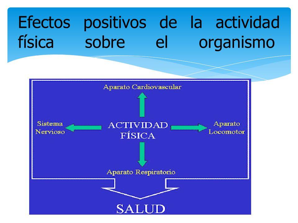 Efectos positivos de la actividad física sobre el organismo
