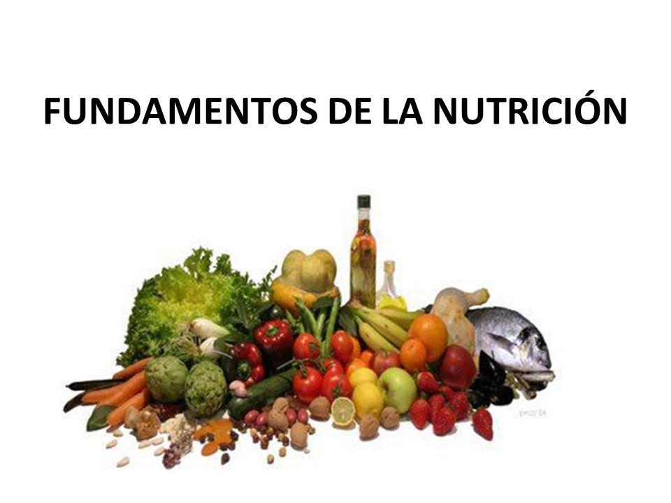 FUNDAMENTOS DE LA NUTRICIÓN