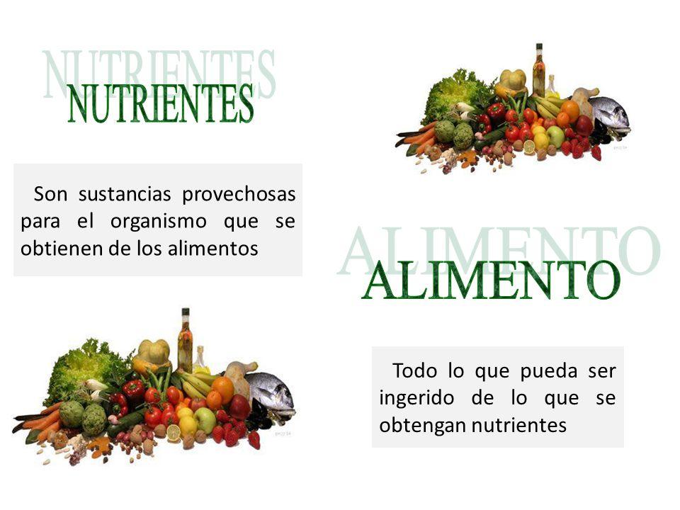 NUTRIENTES Son sustancias provechosas para el organismo que se obtienen de los alimentos. ALIMENTO.