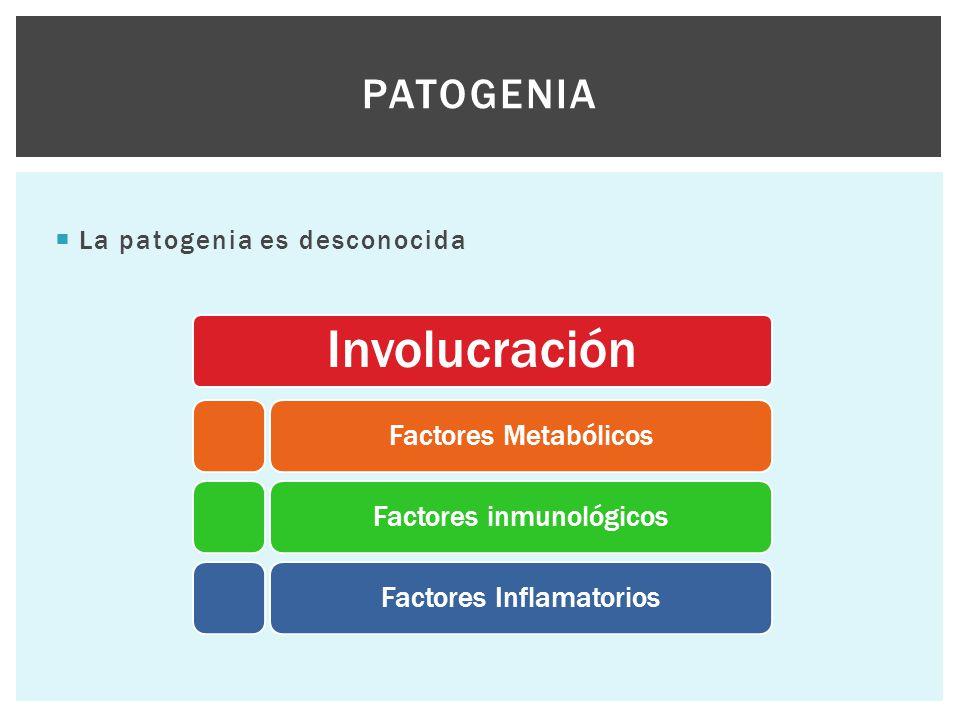 Patogenia La patogenia es desconocida Involucración