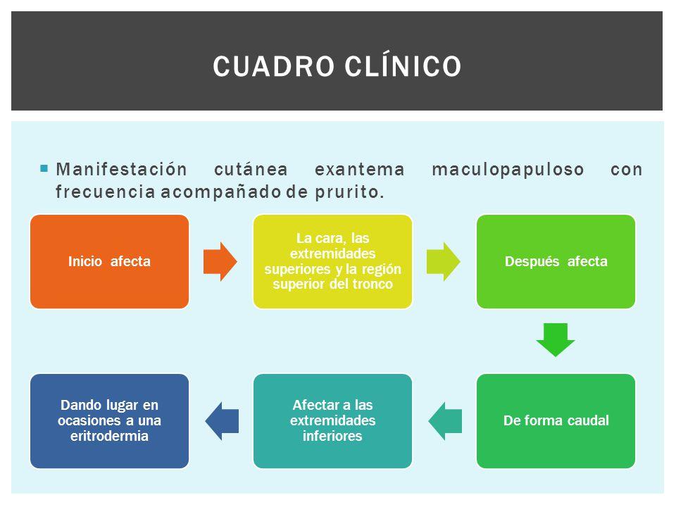 Cuadro clínico Manifestación cutánea exantema maculopapuloso con frecuencia acompañado de prurito. Inicio afecta.