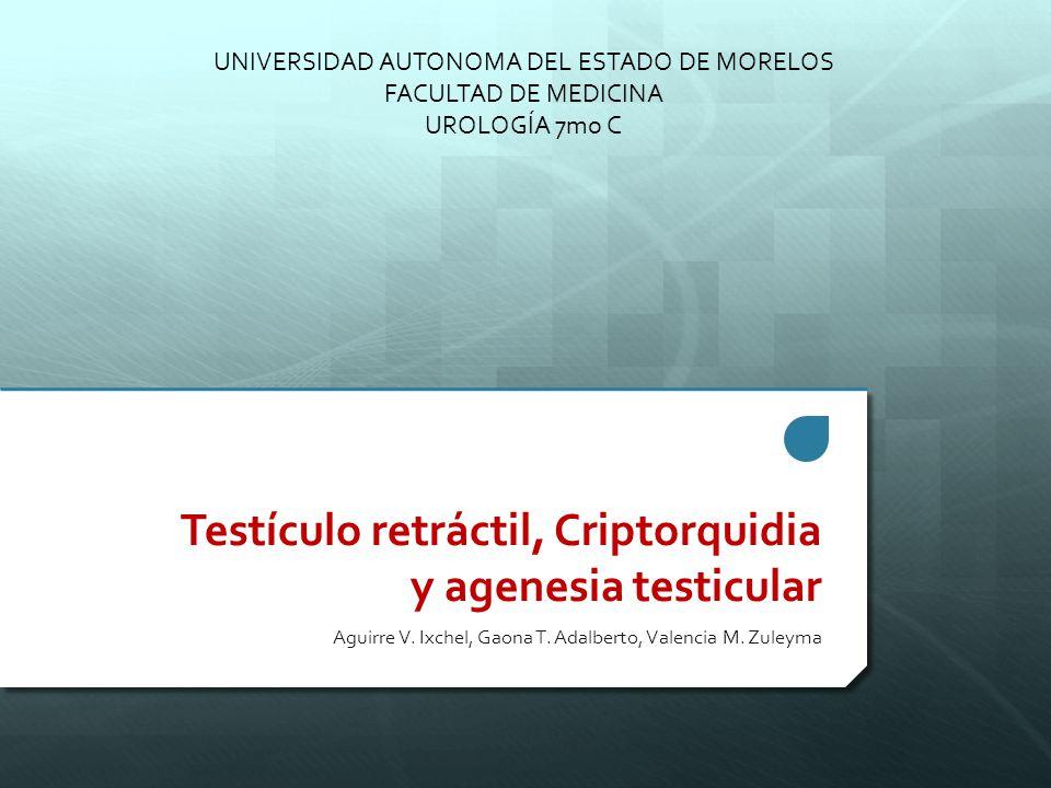 Testículo retráctil, Criptorquidia y agenesia testicular - ppt video ...