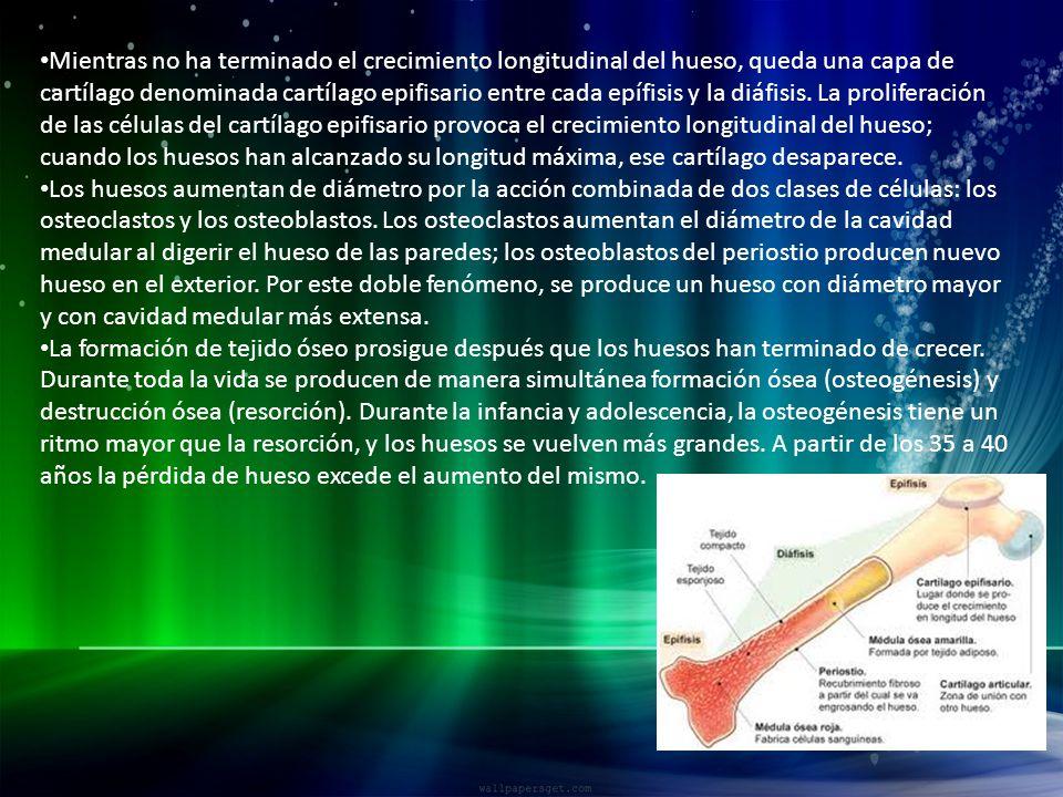 Moderno Crecimiento Placa De La Uña Bosquejo - Ideas Para Esmaltes ...