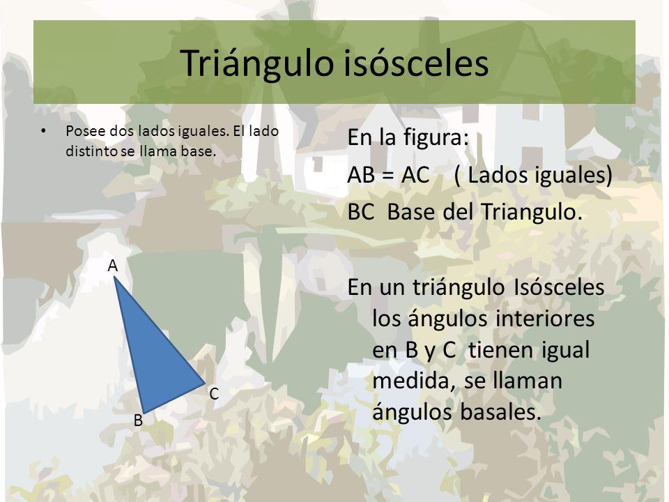 Triángulo isósceles Posee dos lados iguales. El lado distinto se llama base. A. C. B.