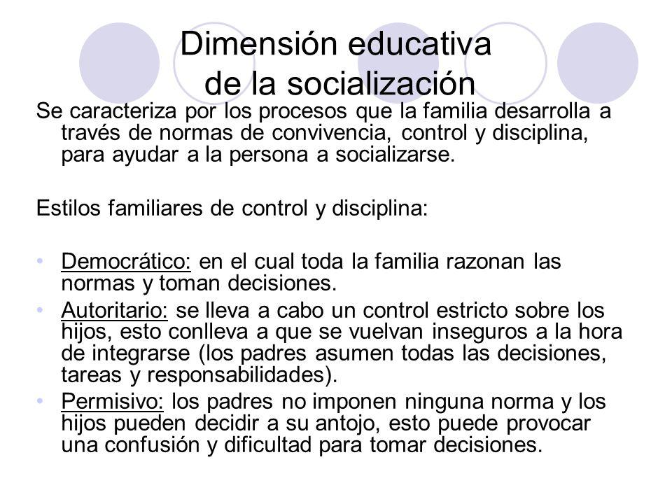 Dimensión educativa de la socialización