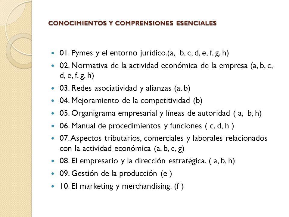 CONOCIMIENTOS Y COMPRENSIONES ESENCIALES
