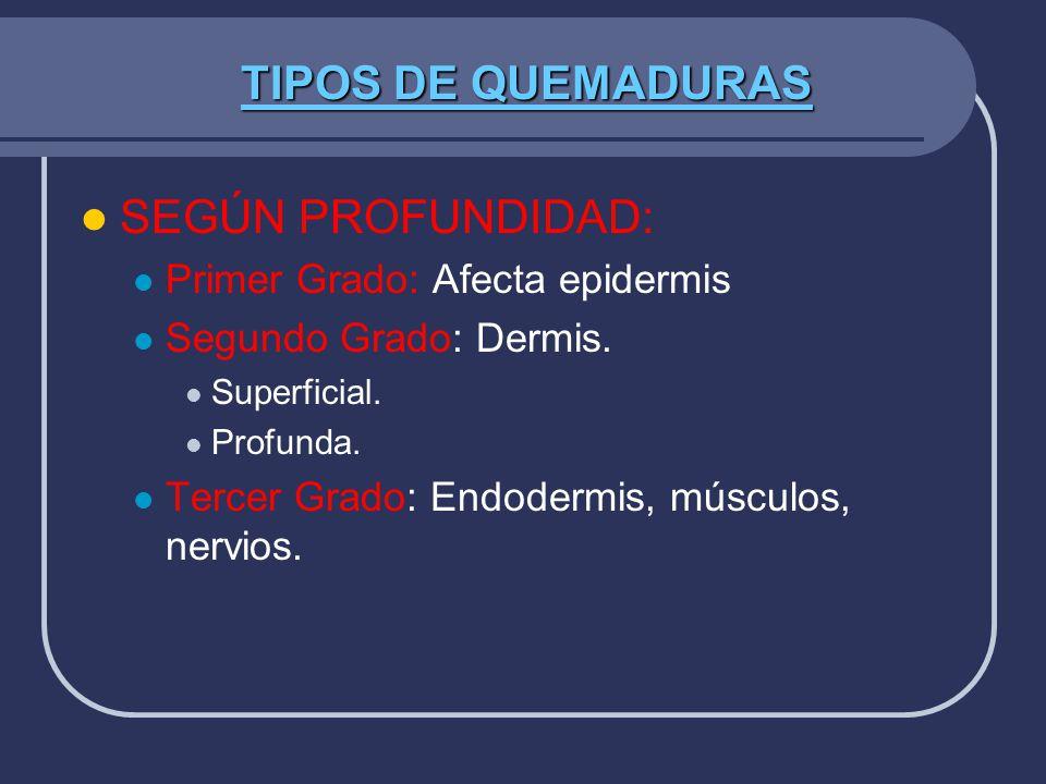 TIPOS DE QUEMADURAS SEGÚN PROFUNDIDAD: Primer Grado: Afecta epidermis