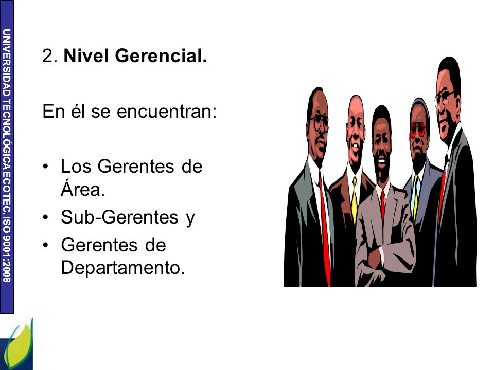 2. Nivel Gerencial. En él se encuentran: Los Gerentes de Área.