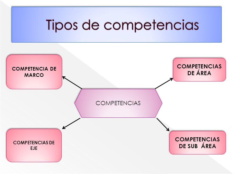 COMPETENCIAS DE SUB ÁREA