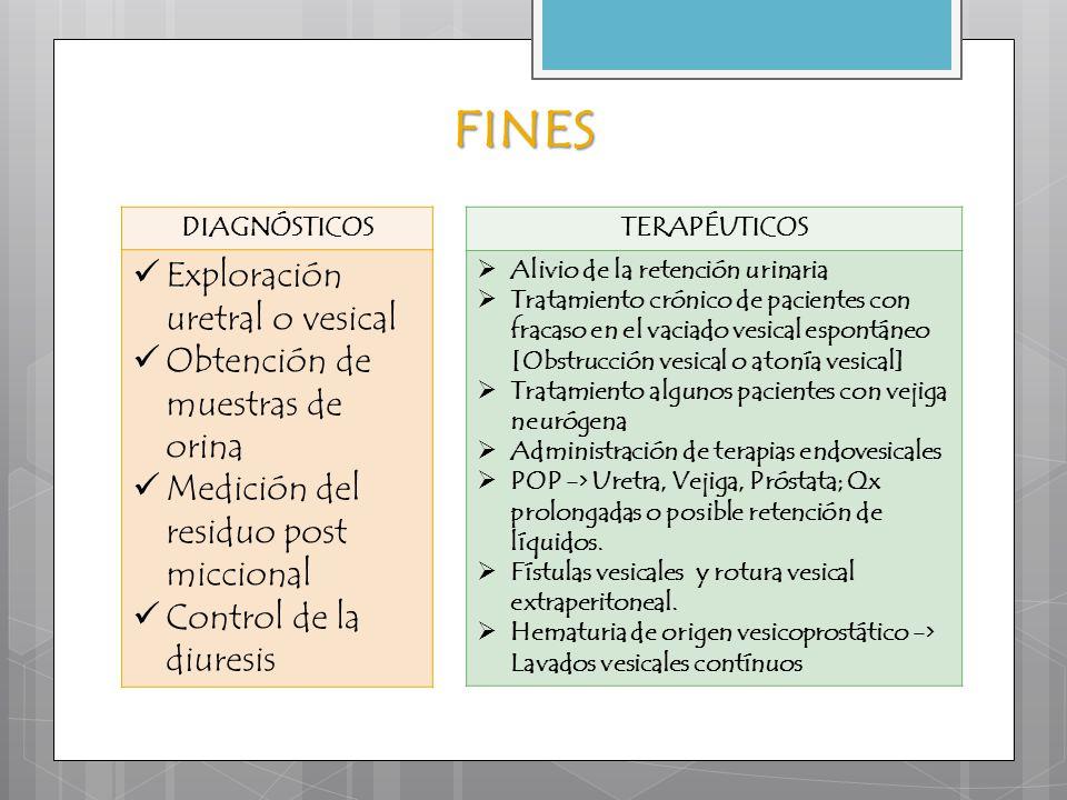 FINES Exploración uretral o vesical Obtención de muestras de orina