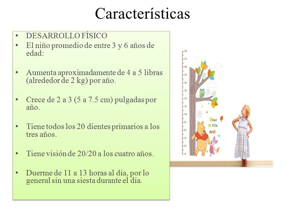 Importancia del desarrollo fisico y cognitivo etapa de 4 for Sillas para ninos de 3 a 6 anos