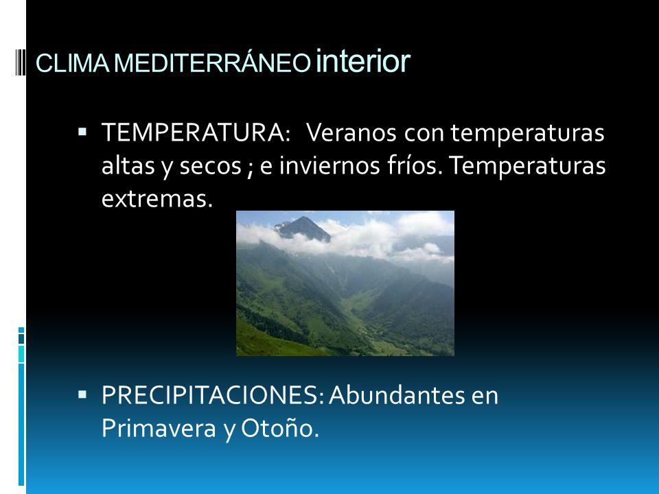 Clima de espa a raquel arias de la nogal 5 c ppt descargar for Clima mediterraneo de interior
