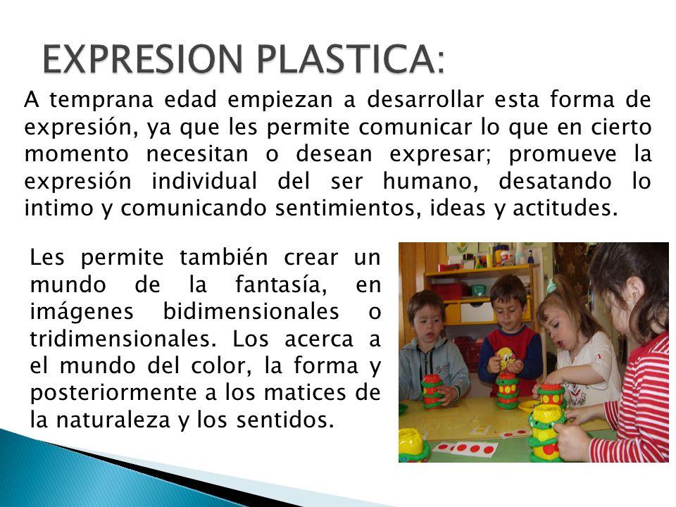 EXPRESION PLASTICA:
