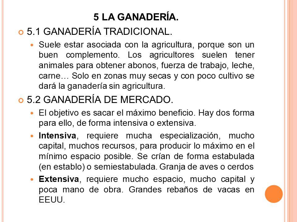 5.1 GANADERÍA TRADICIONAL.