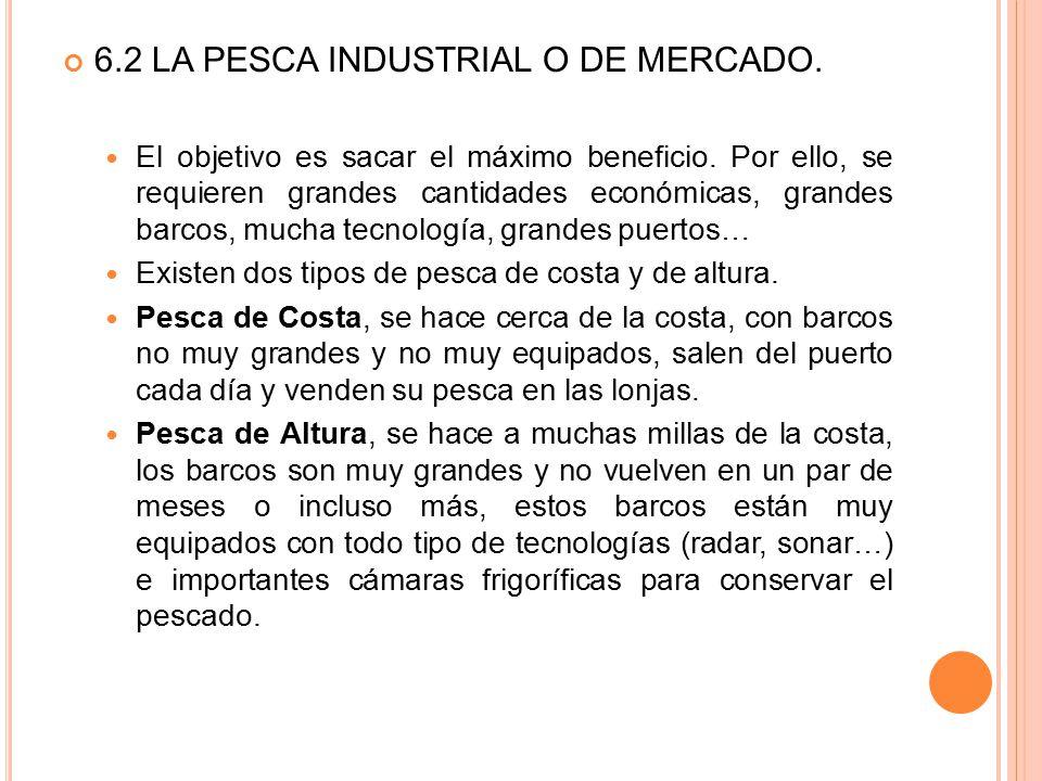 6.2 LA PESCA INDUSTRIAL O DE MERCADO.