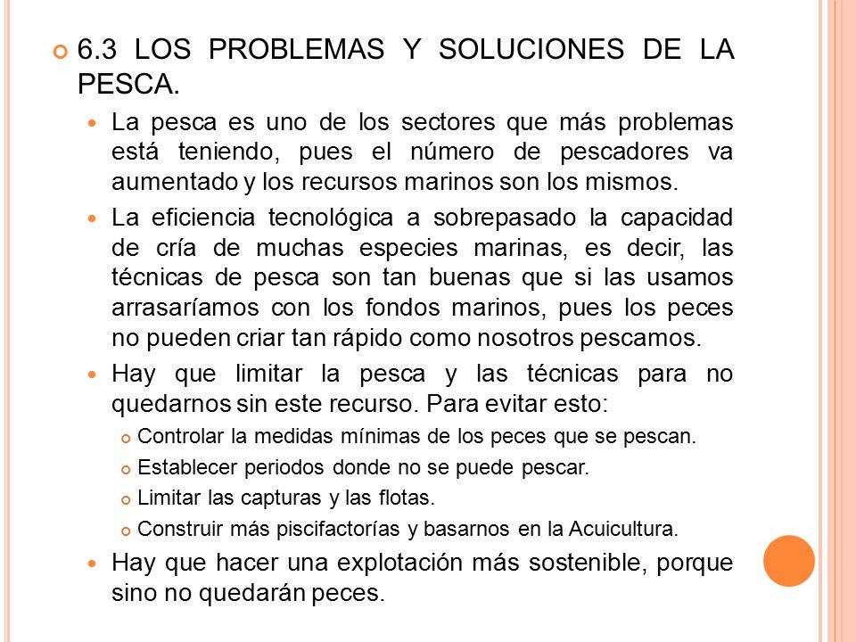 6.3 LOS PROBLEMAS Y SOLUCIONES DE LA PESCA.