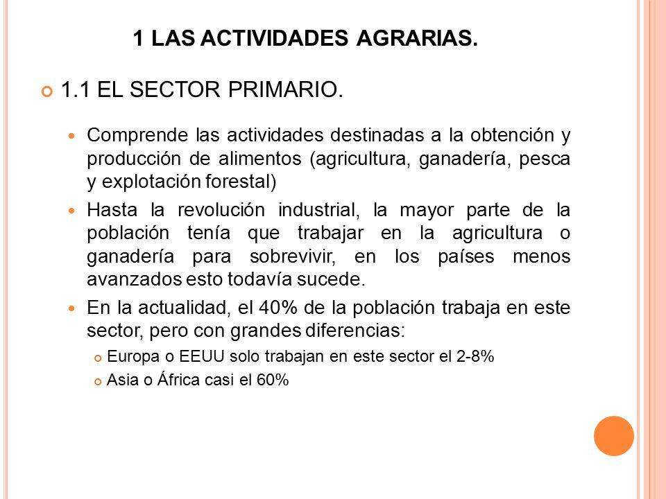 1 LAS ACTIVIDADES AGRARIAS.