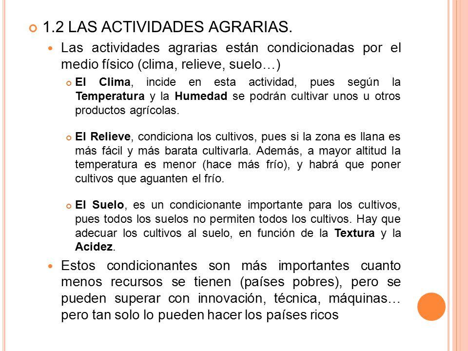 1.2 LAS ACTIVIDADES AGRARIAS.