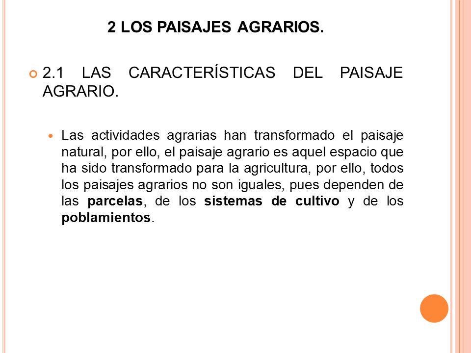 2.1 LAS CARACTERÍSTICAS DEL PAISAJE AGRARIO.