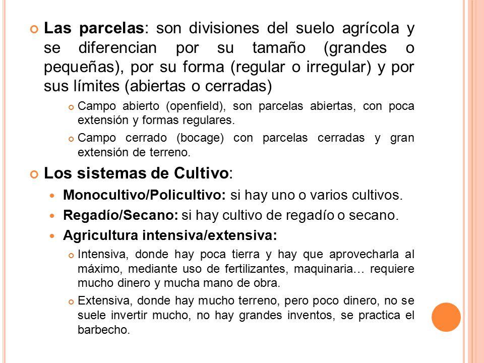 Los sistemas de Cultivo: