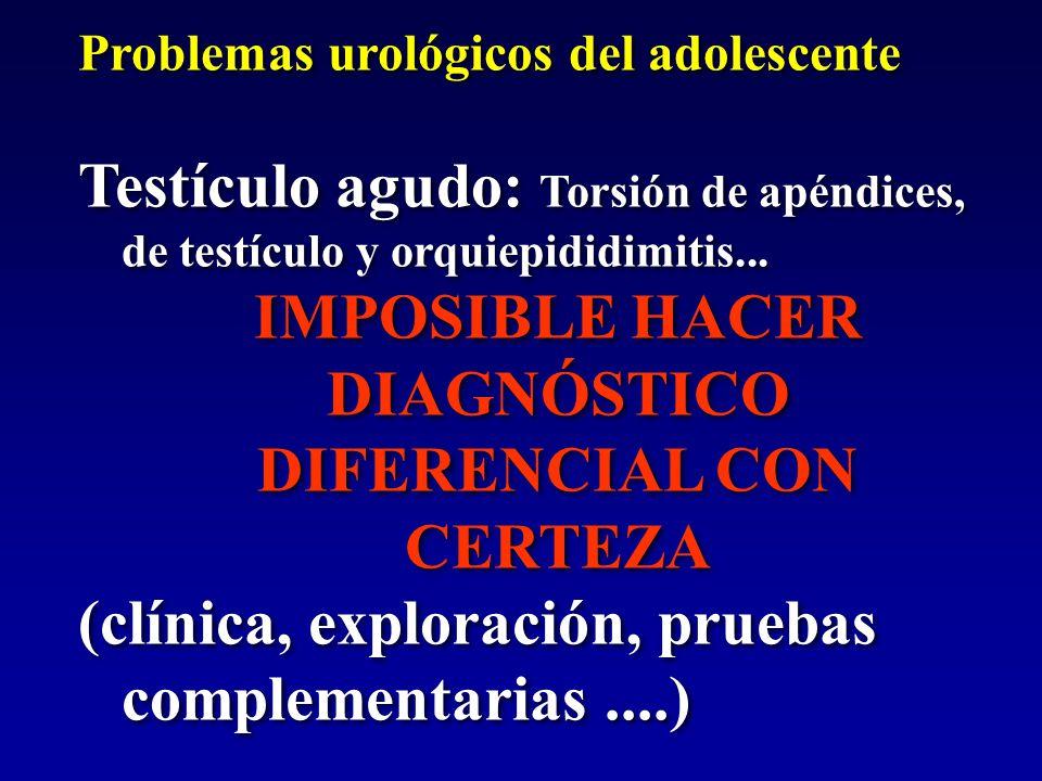 IMPOSIBLE HACER DIAGNÓSTICO DIFERENCIAL CON CERTEZA