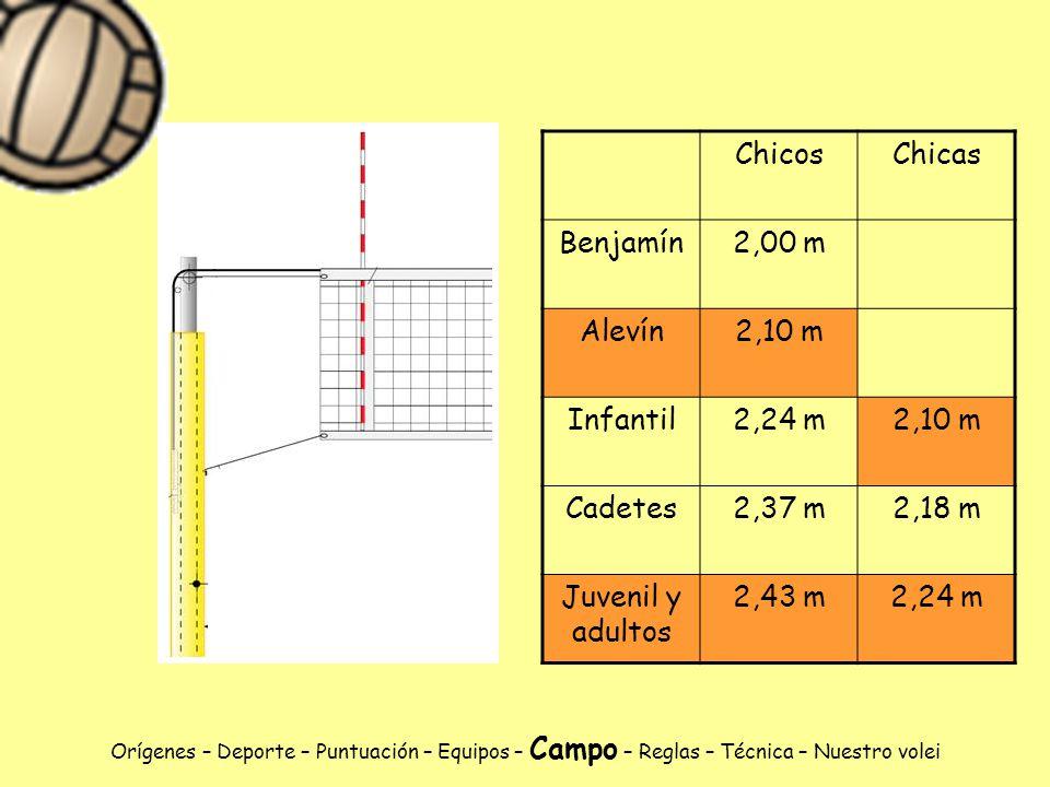 Chicos Chicas Benjamín 2,00 m Alevín 2,10 m Infantil 2,24 m Cadetes