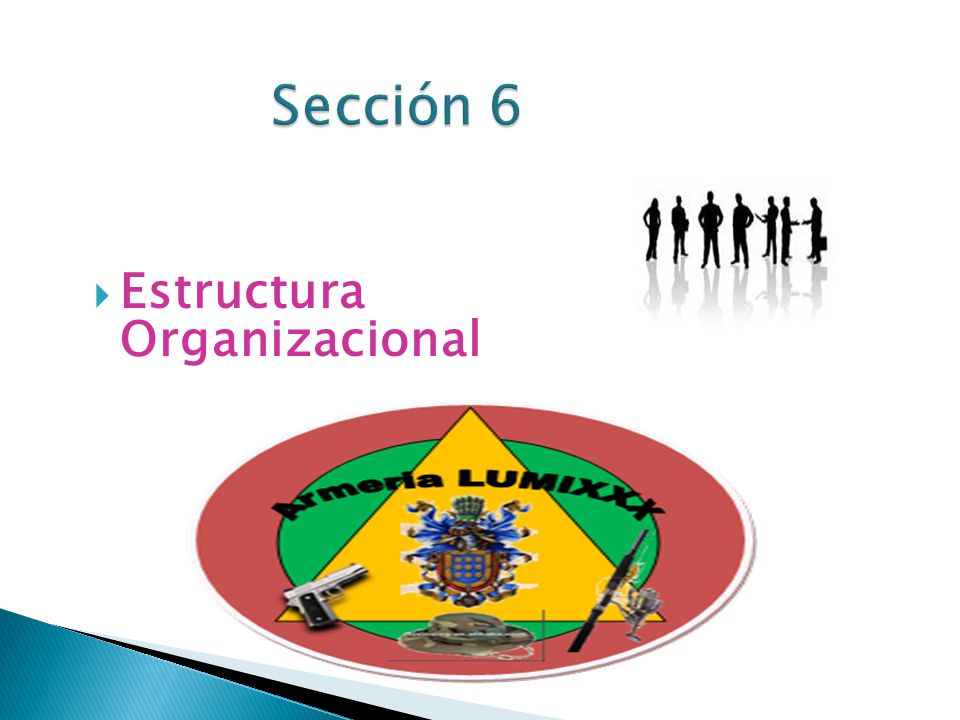 Sección 6 Estructura Organizacional