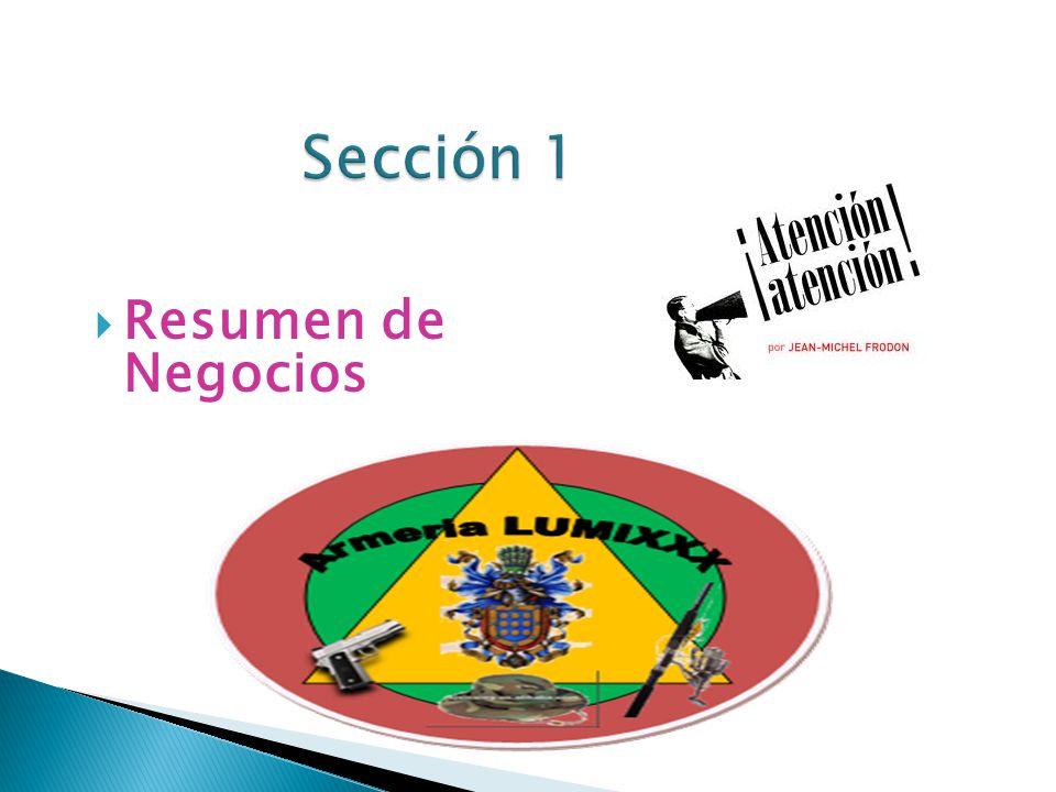 Sección 1 Resumen de Negocios