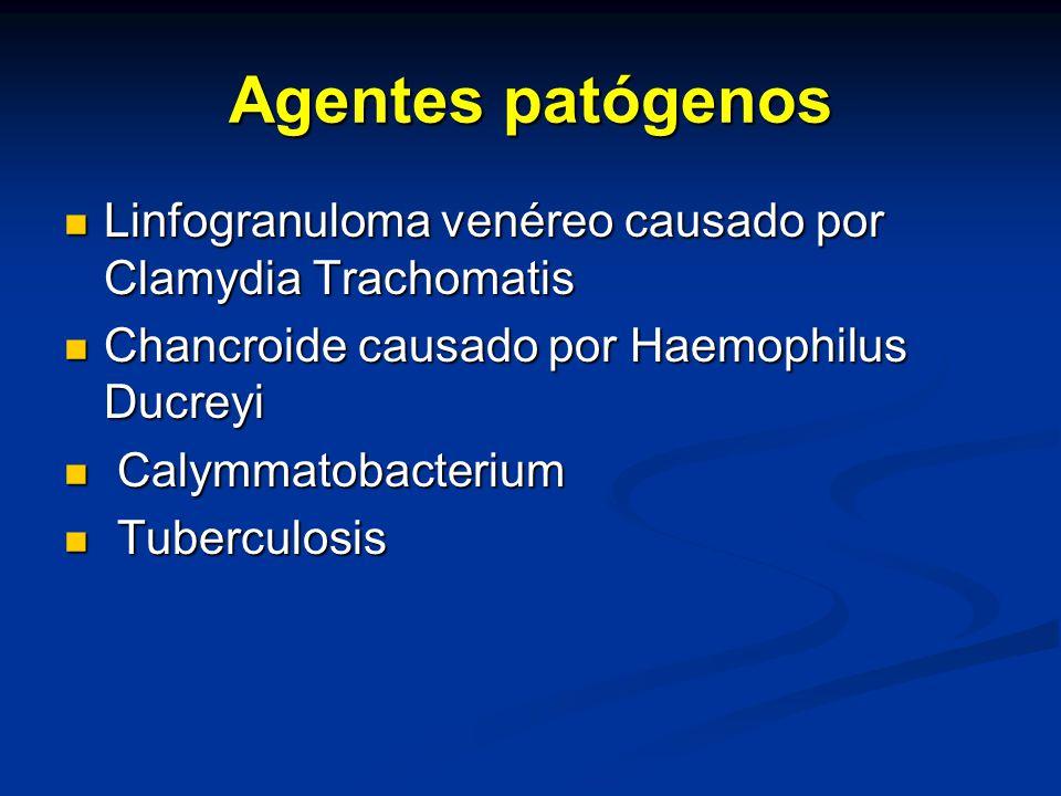 Agentes patógenos Linfogranuloma venéreo causado por Clamydia Trachomatis. Chancroide causado por Haemophilus Ducreyi.