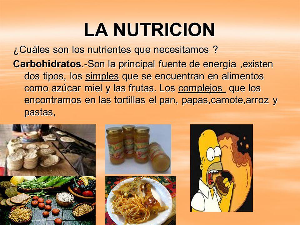 La nutricion la nutrici n es el proceso biol gico en el que los organismos asimilan los - En que alimentos se encuentra zinc ...