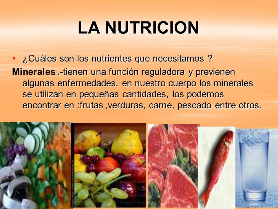 la nutricion la nutrici u00f3n es el proceso biol u00f3gico en el