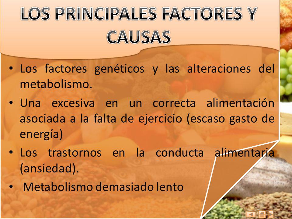 LOS PRINCIPALES FACTORES Y CAUSAS